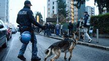 Controlli antidroga della polizia con l'ausilio di cani  (foto di repertorio)