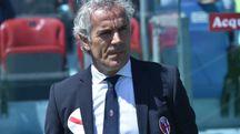 Roberto Donadoni, allenatore del Bologna Fc (LaPresse)