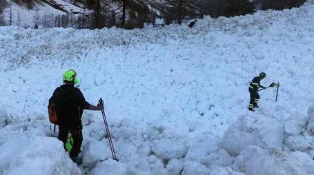 Ricerche sotto la neve