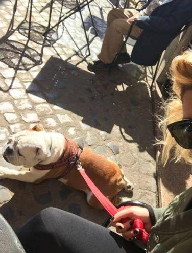 Il cane di Emma Marrone, Gaetano