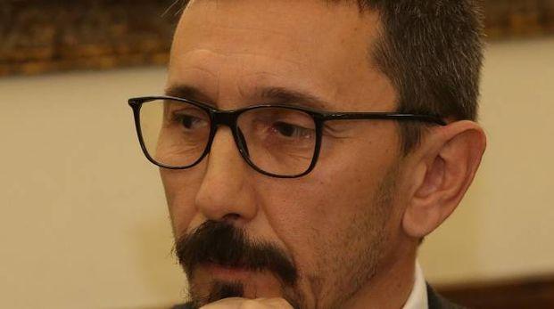 Luca Vannocci