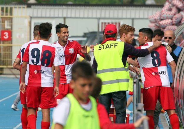 Rimini-Correggese, vittoria per 2-1. Cicarevic segna il secondo gol (foto Petrangeli)