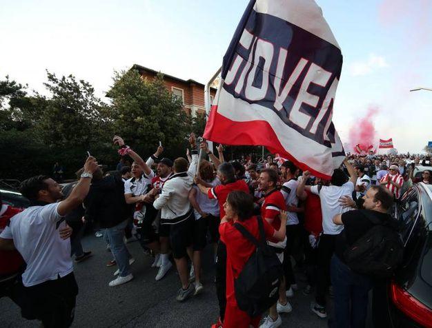La Vis Pesaro è promossa in serie C (FotoPrint)