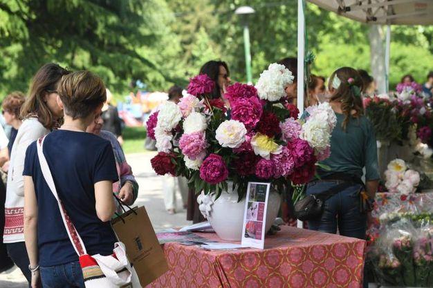 A maggio fioriscono i Giardini Margherita (foto Schicchi)