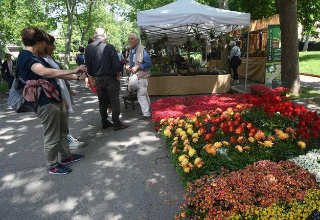 Giardini e Terrazzi 2018, un programma ricco di eventi e dimostrazioni (foto Schicchi)