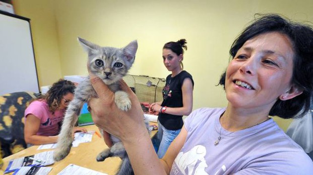 Coccole ad un gattino appena salvato dall'abbandono (Foto Castellani)