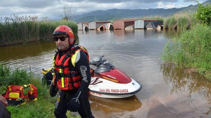 Le ricerche dell'uomo disperso nel lago di Massaciuccoli (foto Umicni)