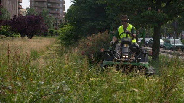 I municipi alle prese con la spending review tagliano i costi e non l'erba