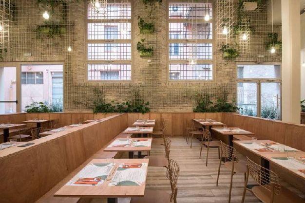 Bio's Kitchen a Bologna : un ristorante ispirato alla natura