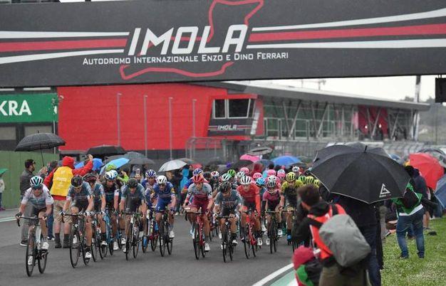 La 12.a tappa del Giro d'Italia arriva a Imola (foto Ansa)