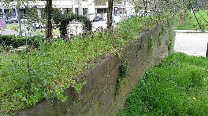 Le mura martoriate