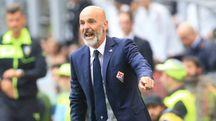Milan-Fiorentina, Pioli (foto Newpress)