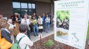 Le celebrazioni drlla 'Giornata mondiale della Biodiversità'