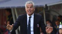 Roberto Donadoni non è più l'allenatore del Bologna (FotoSchicchi)