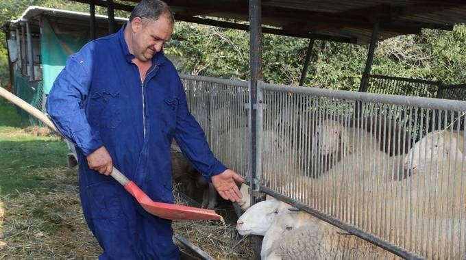 Andrea Gentilini: con la famiglia manda avanti l'azienda agricola e fattoria didattica in via Lola