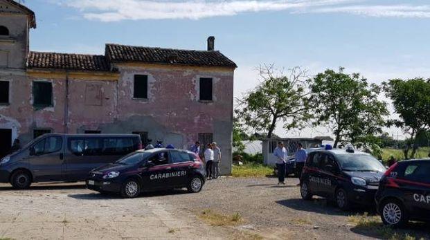 Il blitz dei carabinieri nell'azienda agricola