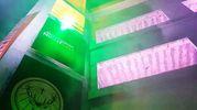 L'ingresso delle ex colonie animato dalle luci (foto Migliorini)