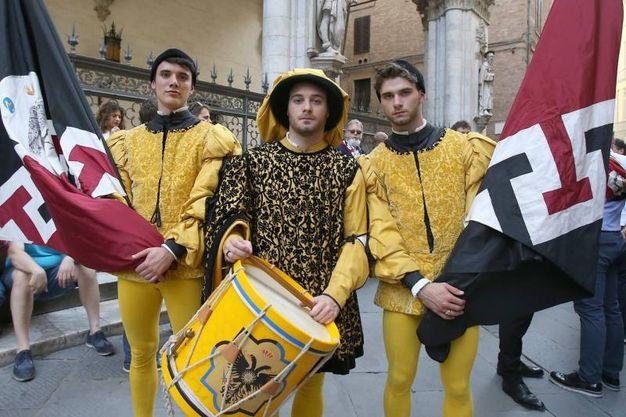 Trecento anni di alleanza Aquila-Civetta (foto Fabio Di Pietro)