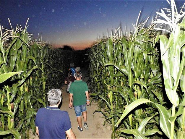 Ogni anno il Labirinto richiama migliaia di visitatori (Scardovi)
