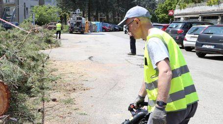 TUTTI ALL'OPERA Previste agevolazioni a chi pulisce aree verdi e strade
