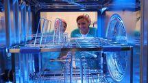La nuova centrale di sterilizzazione (Fotoprint)