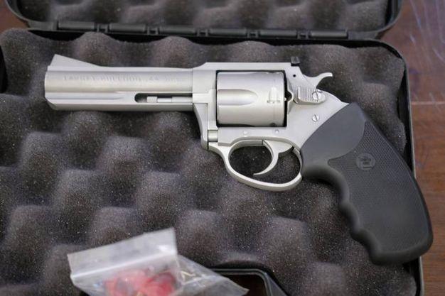 La pistola  (foto Frasca)