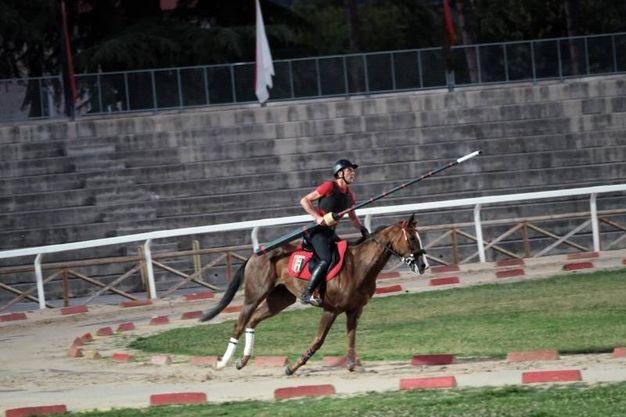 Quintana 2018, cavalieri Tufilla