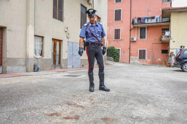 Tentato omicidio a Figline Valdarno (Germogli)