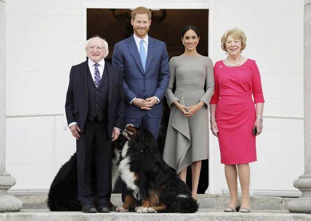 Foto di gruppo con il presidente Higgins e i cani (Ansa)