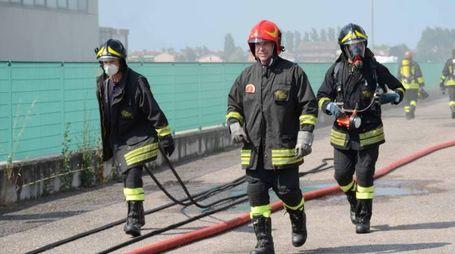 L'intervento dei vigili del fuoco di Rovigo nel magazzino  dell'azienda Itallium, in via Combattenti Alleati d'Europa