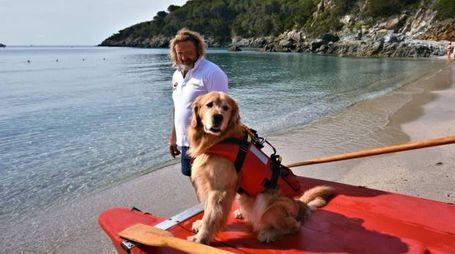 Paco, il cane bagnino all'Isola d'Elba, con il suo conduttore Bruno Mazzantini