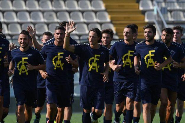Il primo allenamento del Modena calcio (foto Fiocchi)