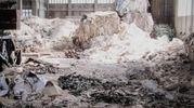 E' stata smantellata dai carabinieri forestali di Milano e Pavia un'associazione a delinquere dedicata al traffico illecito di rifiuti, alla creazione di discariche abusive, alla frode in commercio ed al falso nelle pubbliche registrazioni.