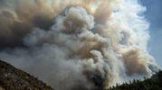 Nube di fumo a Whiskeytown, California (Ansa)