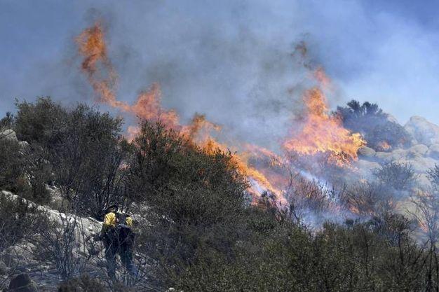 Incendi a San Bernardino, California (Ansa)
