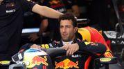 Daniel Ricciardo 8