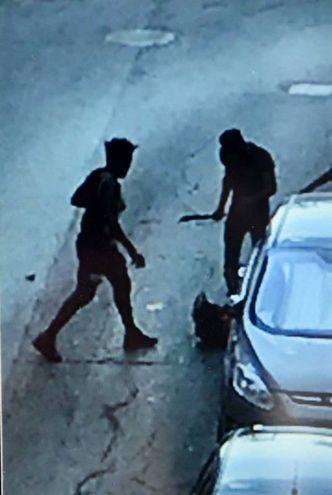 Una telecamera ha ripreso l'aggressione (foto Businesspress)