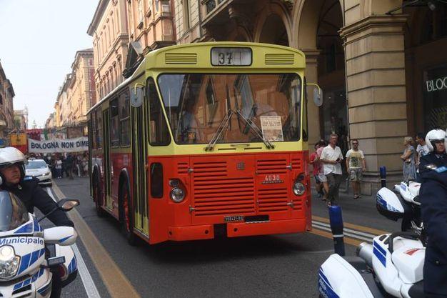 Il bus 37 (FotoSchicchi)