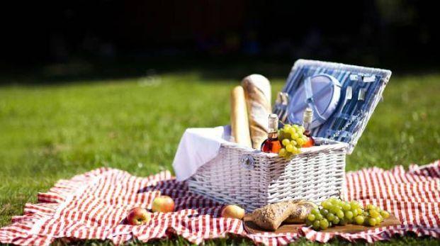 Tempo di picnic!