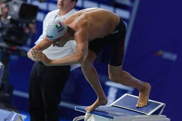 Gregorio Paltrinieri allo start (Lapresse)