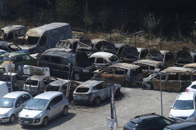 Le auto bruciate (FotoSchicchi)