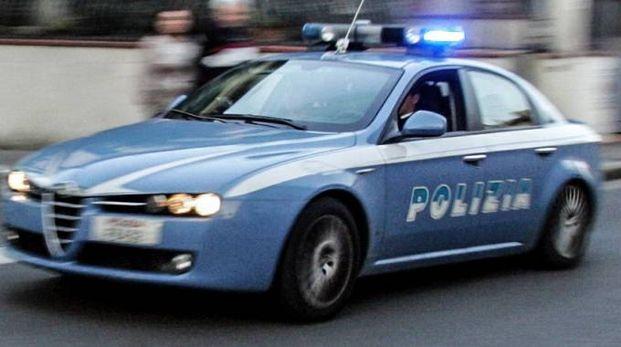 Volante della Polizia (Germogli)