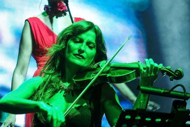 Violino (foto Petrangeli)