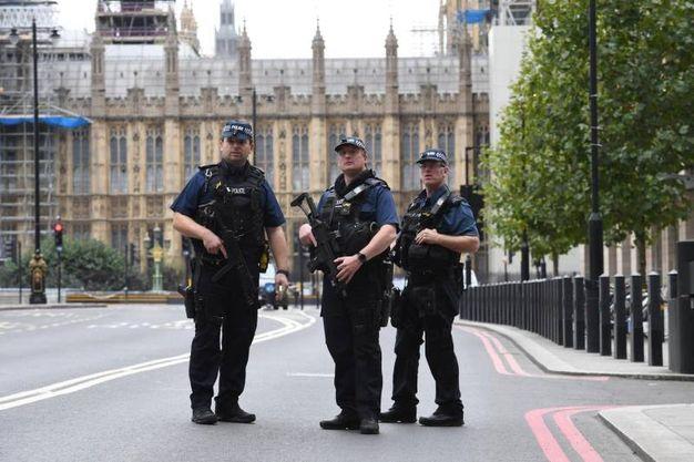 Agenti di polizia fuori dal Parlamento (Ansa)