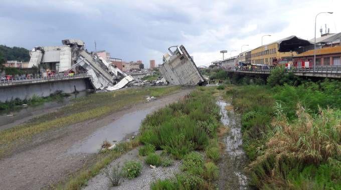 Crollo del ponte Morandi a Genova (foto Emanuela Rosi)