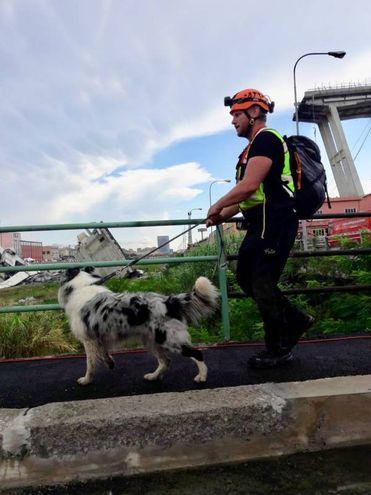 Il ponte crollato a Genova (foto Pasquali)