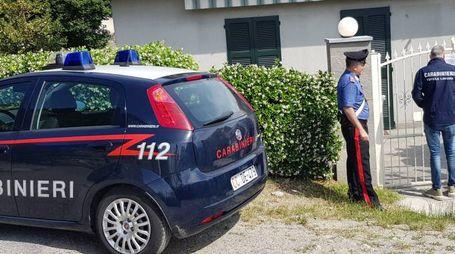 I carabinieri hanno ispezionato varie attività agricole