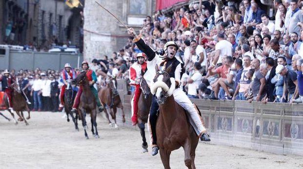 Gingillo e Porto Alabe vincono il Palio dell'Assunta 2018 (foto Paolo Lazzeroni)