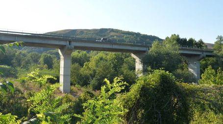 Uno dei ponti monitorati dalla provincia, a Gualdo nel meldolese (foto Frasca)