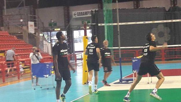 Primo allenamento a Perugia per la Sir (foto Crocchioni)